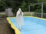 令和3年7月9日  プール開き